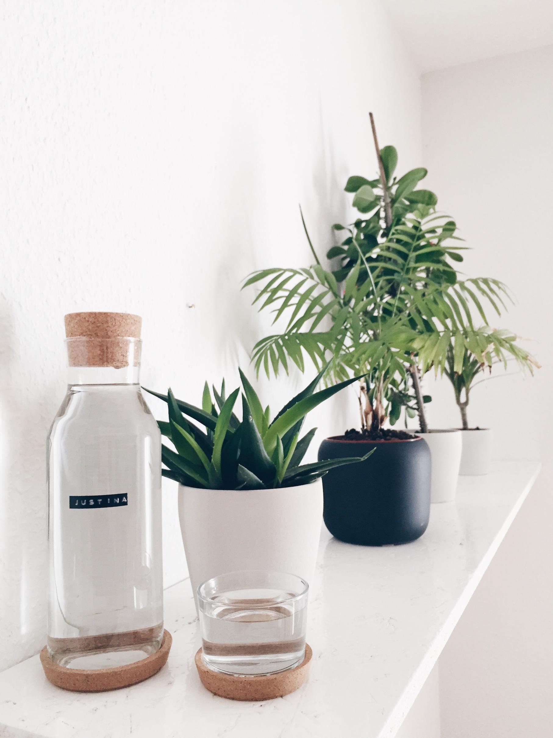 Wasserfilter Acala Quell