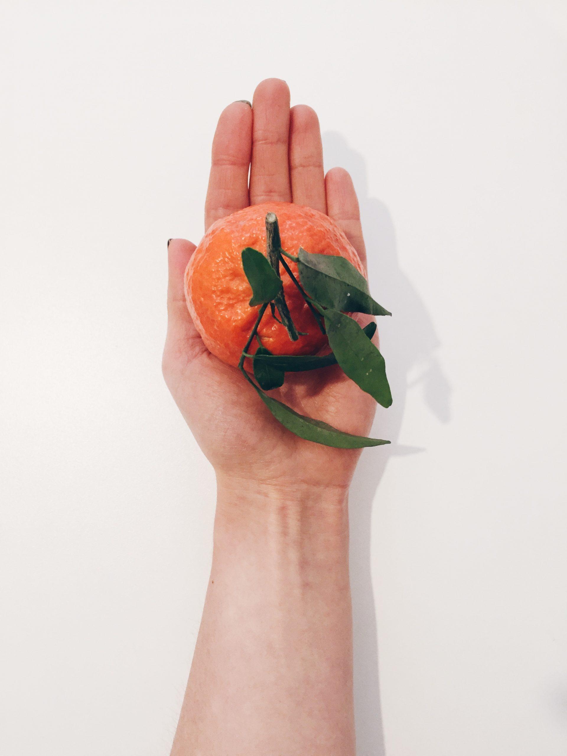 Warum ist gesund essen so schwer und was kann man dagegen tun?